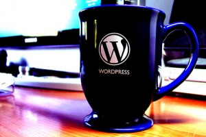 10 Reasons Why Business Blogs and Websites Should Use WordPress