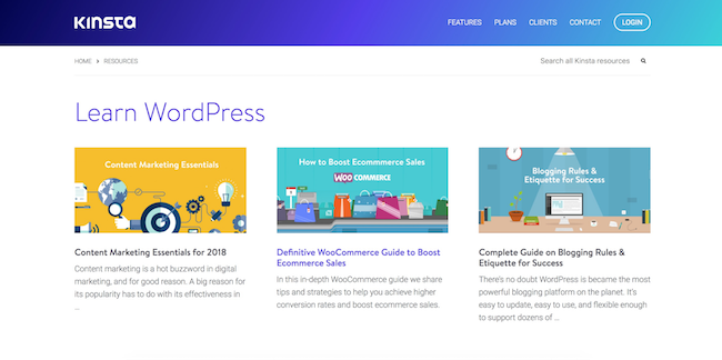 Kinsta resources section