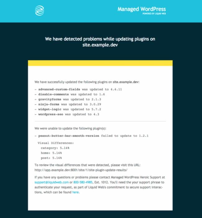 LiquidWeb email report