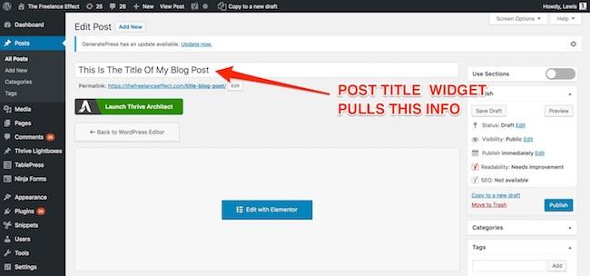 Elementor - post title info